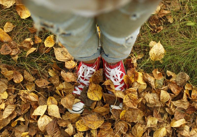Muchacha en las zapatillas de deporte que se colocan en las hojas de otoño Pies en licencia de otoño imagenes de archivo