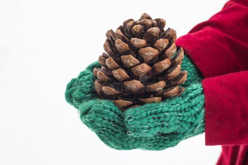 Muchacha en manoplas verdes y una capa roja que sostiene un cono del pino en el fondo blanco de la nieve La Navidad imagen de archivo