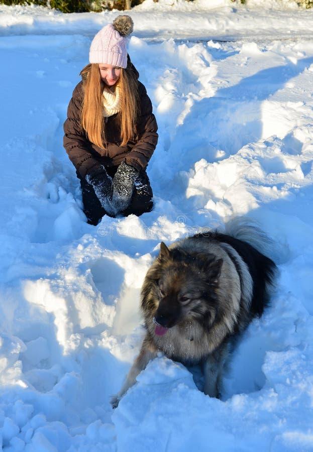 Muchacha en nieve y perro imagenes de archivo