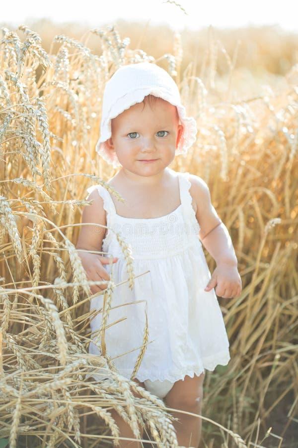 Muchacha en un campo de trigo imágenes de archivo libres de regalías