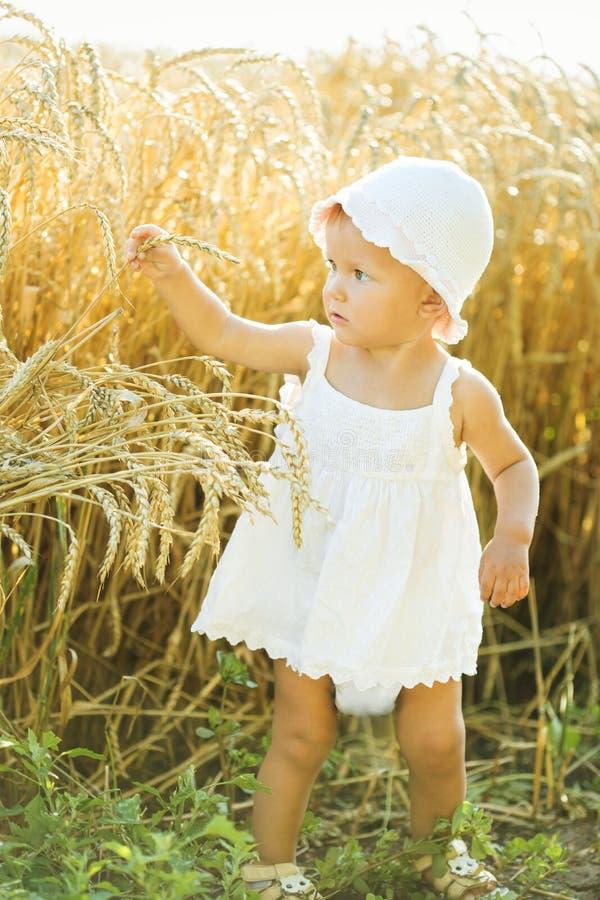 Muchacha en un campo de trigo imagen de archivo