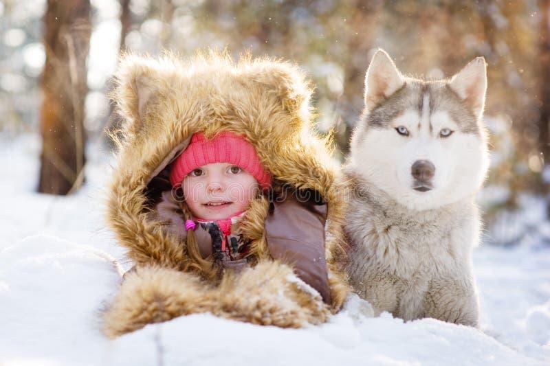 Muchacha en un sombrero de piel que miente al lado de perro esquimal en la nieve en el bosque fotos de archivo