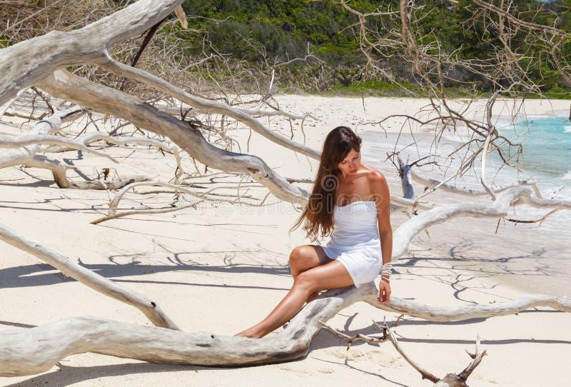 Muchacha en un vestido en el árbol seco foto de archivo libre de regalías