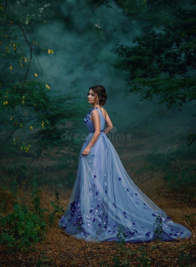 Muchacha en un vestido largo, vagando el bosque en la niebla imágenes de archivo libres de regalías