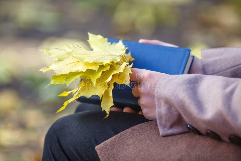 Muchacha en una capa que sostiene hojas de arce y un libro en el parque en au imagenes de archivo