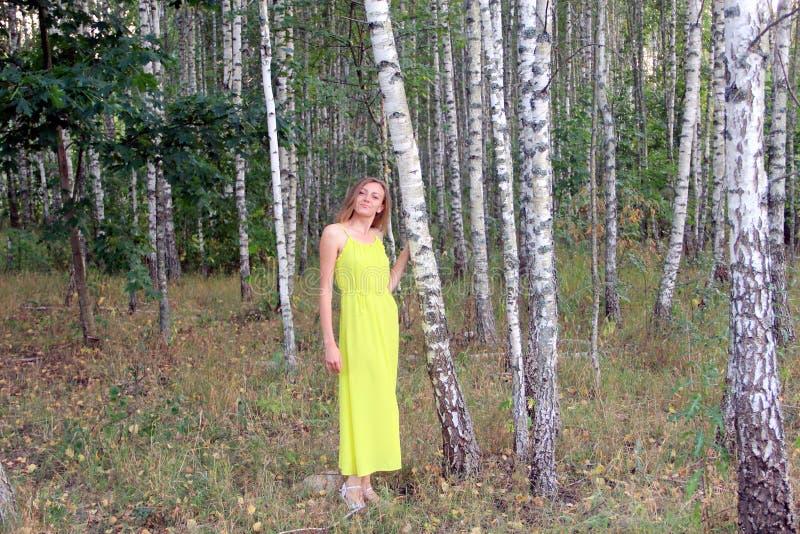 Muchacha en vestido amarillo brillante por la tarde en el bosque del abedul fotos de archivo