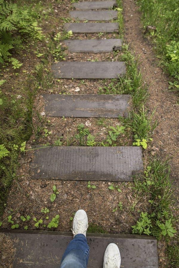 Muchacha en zapatillas de deporte y vaqueros abajo de los pasos de madera mojados después del r imagen de archivo libre de regalías