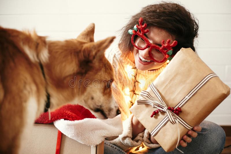 Muchacha feliz elegante con la caja de regalo de la Navidad en luces de la Navidad y sonrisa al perro de oro lindo Mujer joven en fotografía de archivo