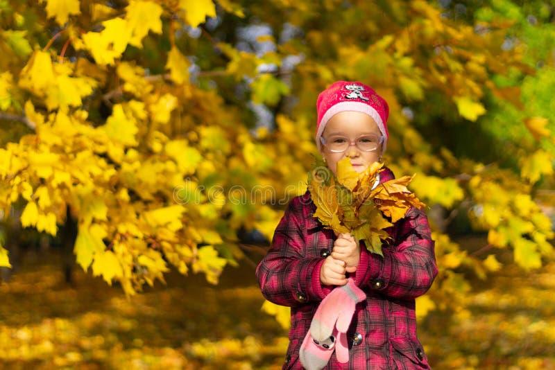 Muchacha feliz que juega con las hojas caidas en parque del otoño foto de archivo