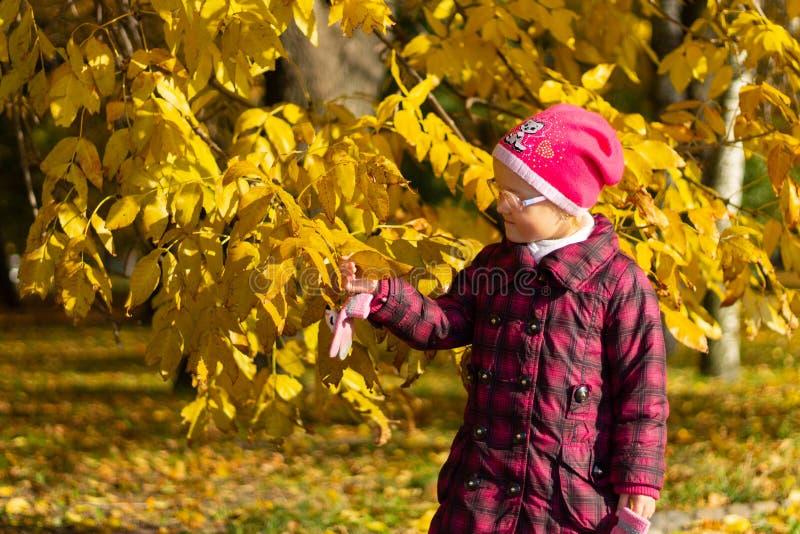 Muchacha feliz que juega con las hojas caidas en parque del otoño imágenes de archivo libres de regalías