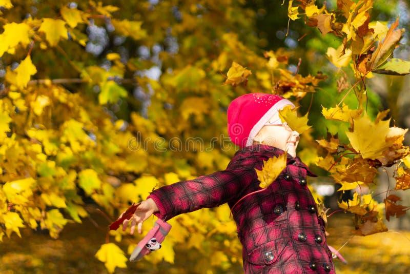 Muchacha feliz que juega con las hojas caidas en parque del otoño imagen de archivo libre de regalías