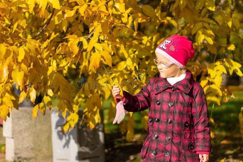 Muchacha feliz que juega con las hojas caidas en parque del otoño fotografía de archivo libre de regalías