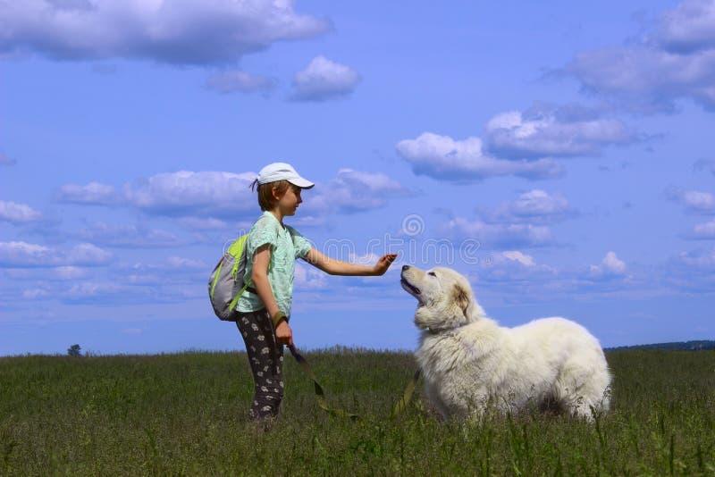 Muchacha feliz que juega con su perro casero fotografía de archivo
