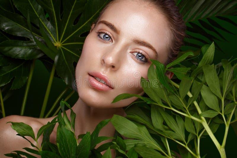 Muchacha fresca hermosa con la piel perfecta, el maquillaje natural y las hojas verdes Cara de la belleza foto de archivo