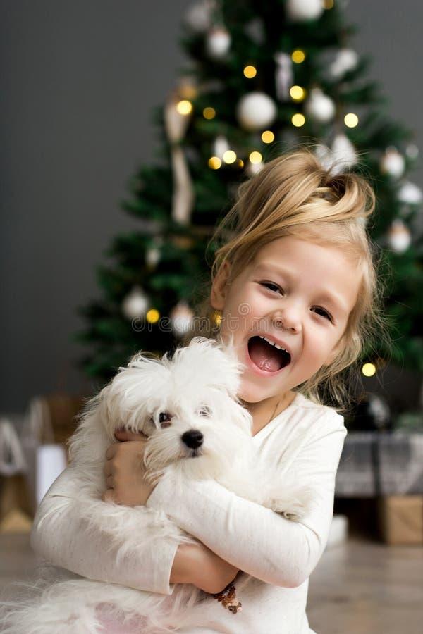 Muchacha hermosa con el perro que se sienta cerca del árbol de navidad Feliz Navidad y buenas fiestas fotografía de archivo libre de regalías