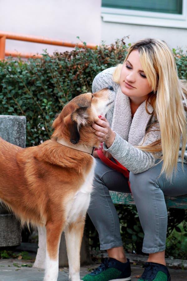 Muchacha hermosa con su perro del perro pastor de Shetland que se sienta y que presenta delante de cámara en banco de madera en e imagenes de archivo
