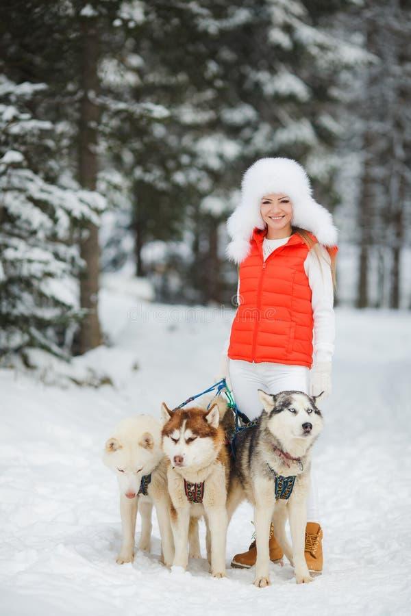 Muchacha hermosa con un husky siberiano en la nieve imagen de archivo
