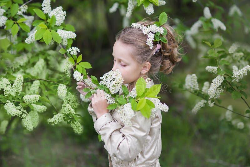 Muchacha hermosa dulce que huele una rama de la cereza de pájaro en un jardín floreciente imagen de archivo libre de regalías