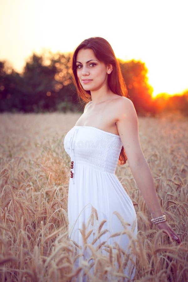 Muchacha hermosa en campo de trigo en la puesta del sol imágenes de archivo libres de regalías