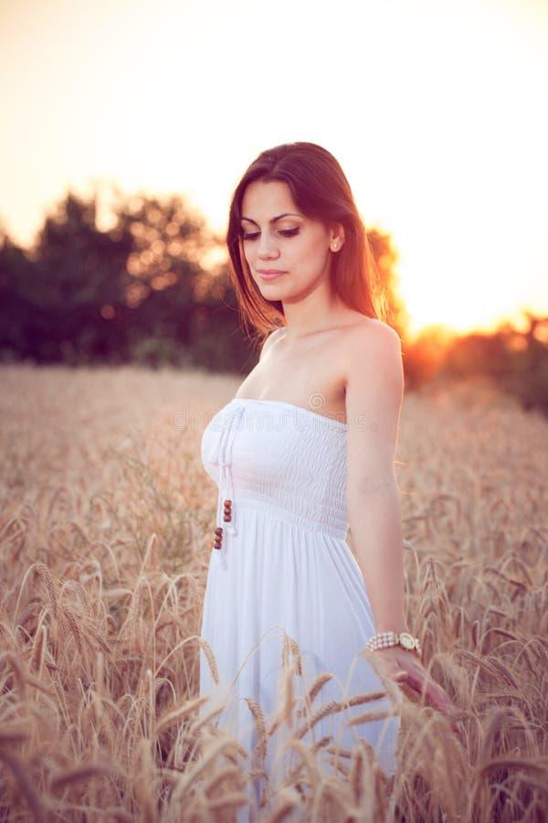 Muchacha hermosa en campo de trigo en la puesta del sol fotos de archivo