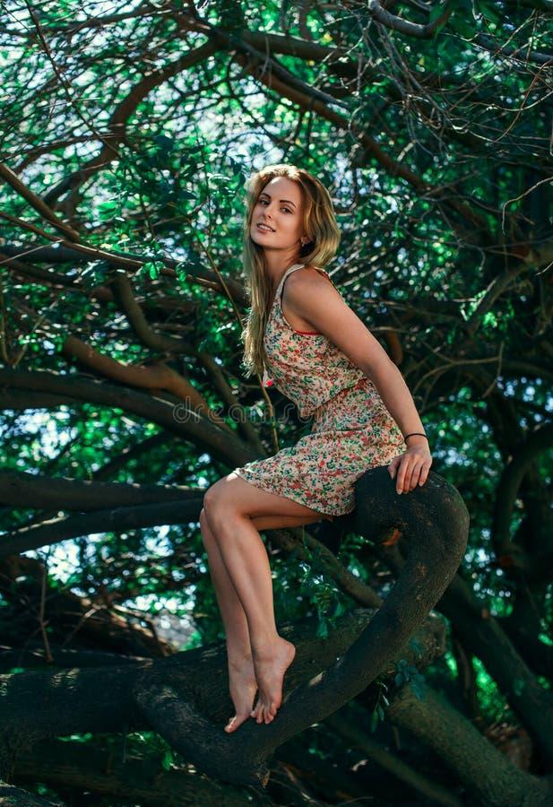 Muchacha hermosa en el árbol fotografía de archivo