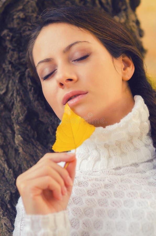 Muchacha hermosa en el bosque del otoño imagenes de archivo
