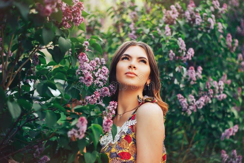 muchacha hermosa en la lila que mira para arriba imagenes de archivo