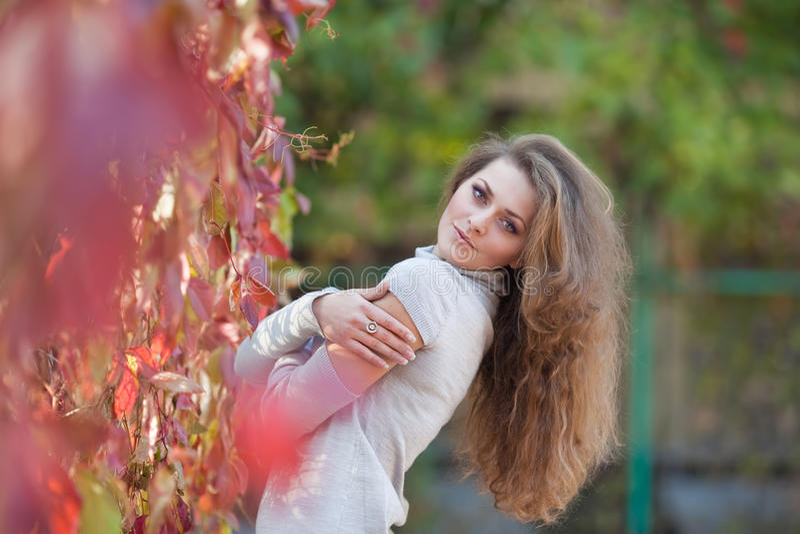 Muchacha hermosa en parque del otoño imagen de archivo libre de regalías
