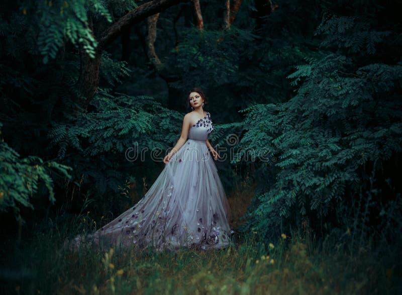 Muchacha hermosa en un vestido largo magnífico, paseo entre los árboles imagenes de archivo