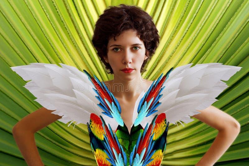 Muchacha hermosa joven en la imagen de un loro en plumas y alas brillantemente coloreadas foto de archivo libre de regalías
