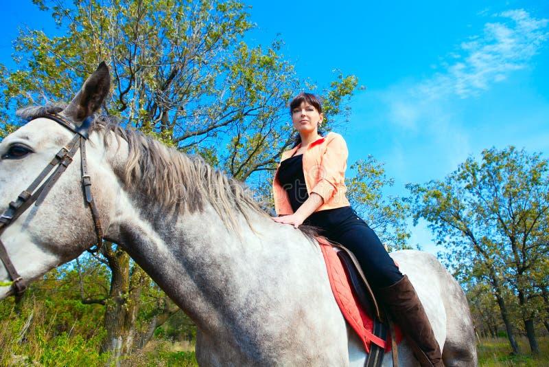 Muchacha hermosa joven en paseo del caballo imagen de archivo libre de regalías