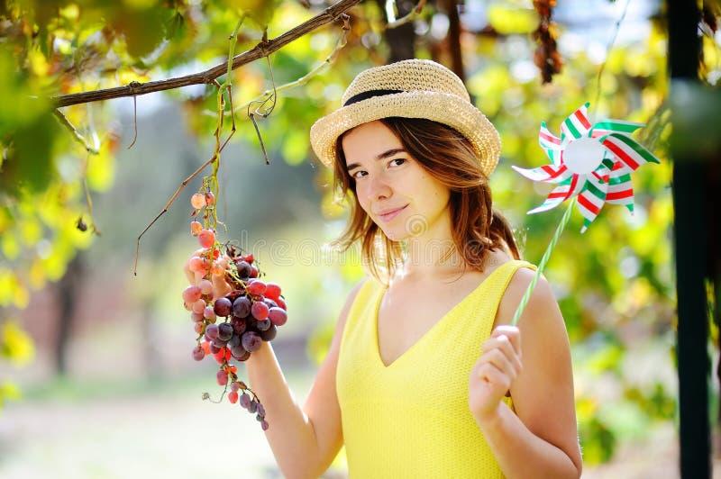 Muchacha hermosa joven que escoge la uva suave en día soleado en Italia foto de archivo