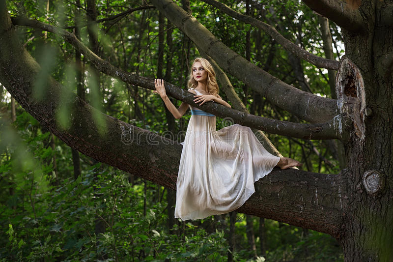 Muchacha hermosa joven que se sienta en un árbol grande en parque del verano foto de archivo libre de regalías