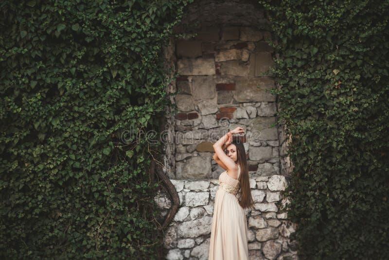 Muchacha hermosa, modelo cerca de la pared de hojas y arbustos en parque imagenes de archivo