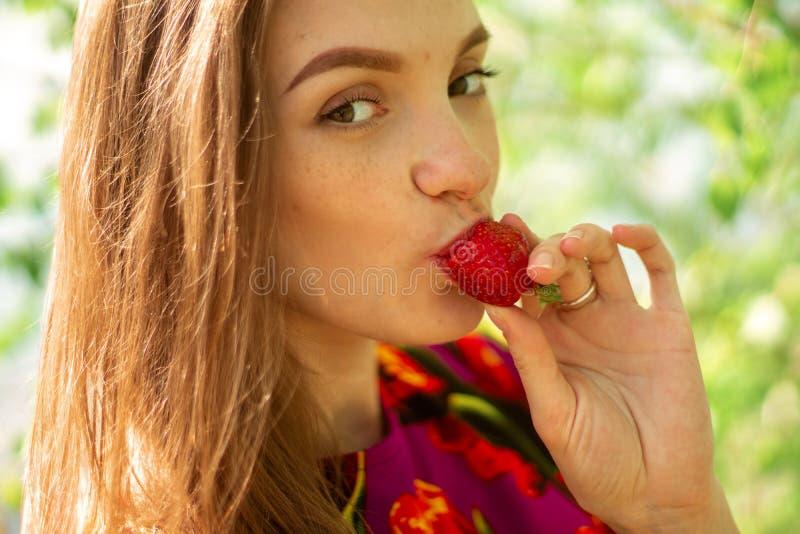 Muchacha hermosa que come las fresas imágenes de archivo libres de regalías