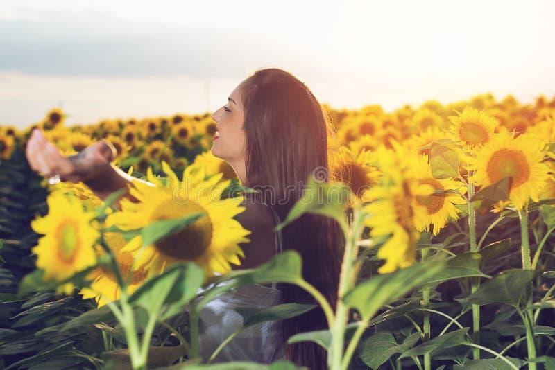 Muchacha hermosa que disfruta de la naturaleza en el campo de girasoles en la puesta del sol imágenes de archivo libres de regalías