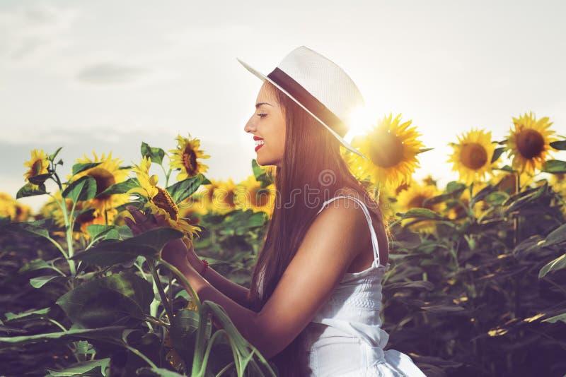 Muchacha hermosa que disfruta de la naturaleza en el campo de girasoles en la puesta del sol foto de archivo