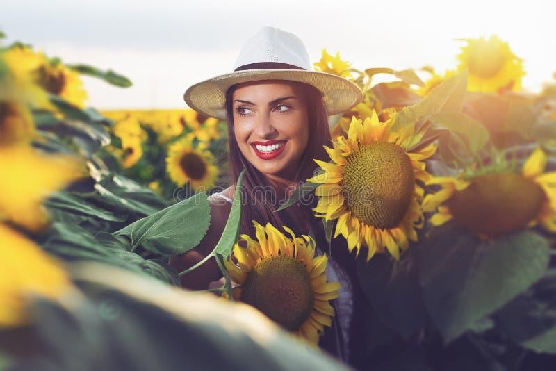 Muchacha hermosa que disfruta de la naturaleza en el campo de girasoles en la puesta del sol fotografía de archivo