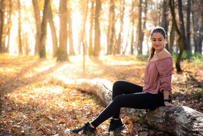 Muchacha hermosa que localiza en un tronco con follaje anaranjado y luz del sol de oro foto de archivo libre de regalías