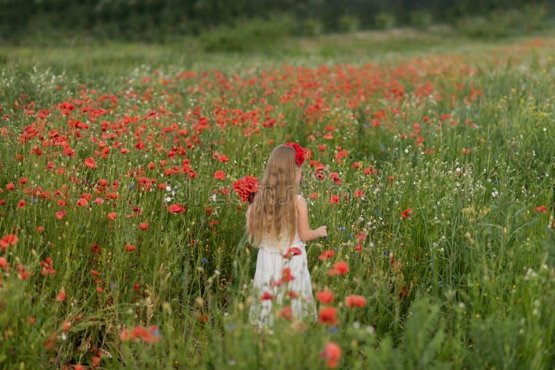Muchacha hermosa ucraniana en el campo de amapolas y del trigo retrato al aire libre en amapolas imágenes de archivo libres de regalías