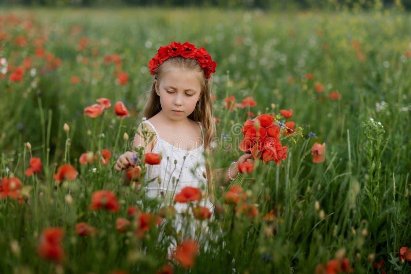 Muchacha hermosa ucraniana en el campo de amapolas y del trigo retrato al aire libre en amapolas imagenes de archivo