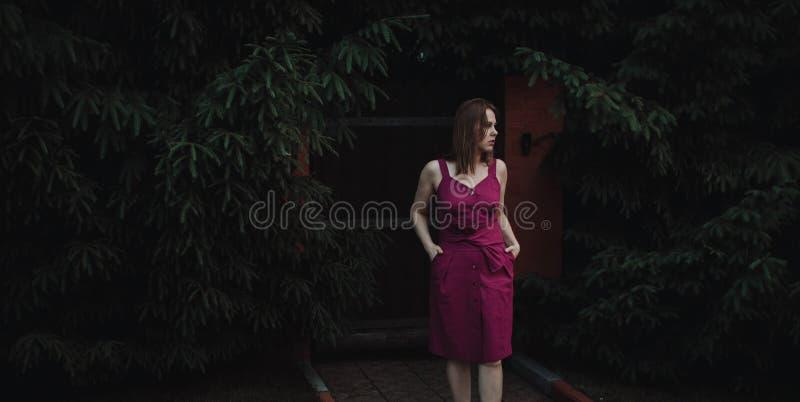 Muchacha interesante elegante en un vestido de Borgo?a contra una cerca de madera y un seto grueso de abetos Preocupado y mirando fotos de archivo
