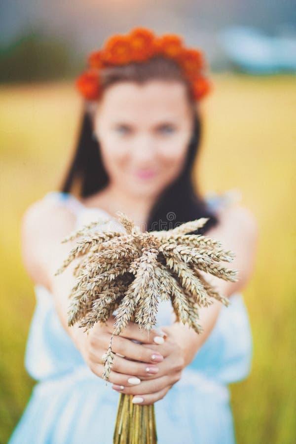 Muchacha irreconocible hermosa en la tenencia azul del vestido en el ramo de las manos de trigo Concepto de forma de vida del cam imagen de archivo libre de regalías
