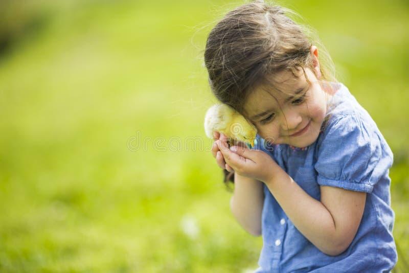 Muchacha linda con el pollo imagen de archivo