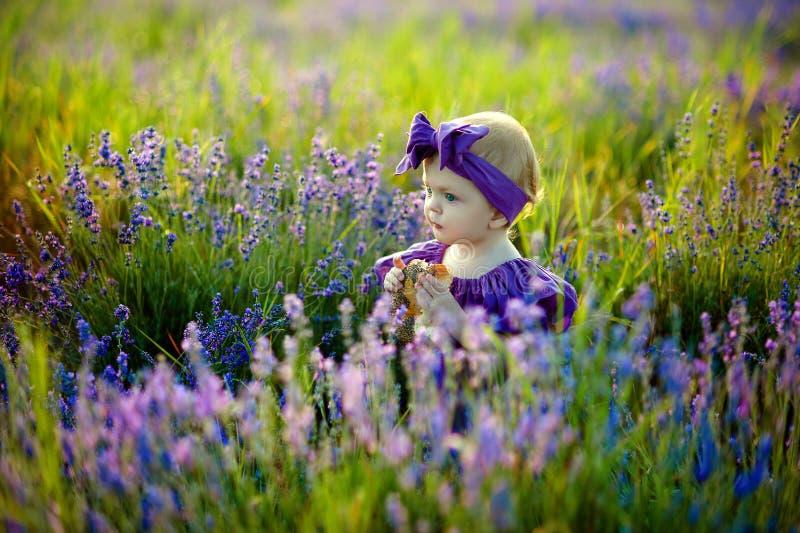 Muchacha linda del niño que camina en el campo de la lavanda, concepto feliz de la niñez foto de archivo