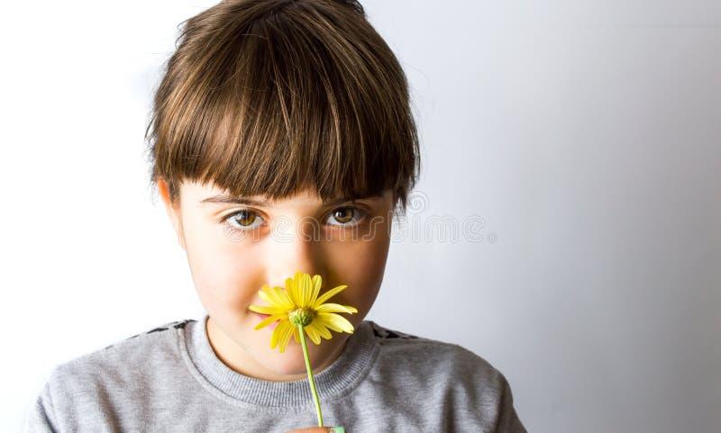 Muchacha linda que huele la flor amarilla de la primavera fotografía de archivo libre de regalías