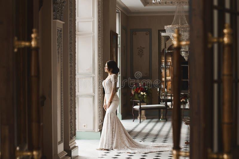 Muchacha modelo morena hermosa y atractiva con el cuerpo perfecto, en vestido elegante de moda del cordón con la sonrisa trasera  foto de archivo