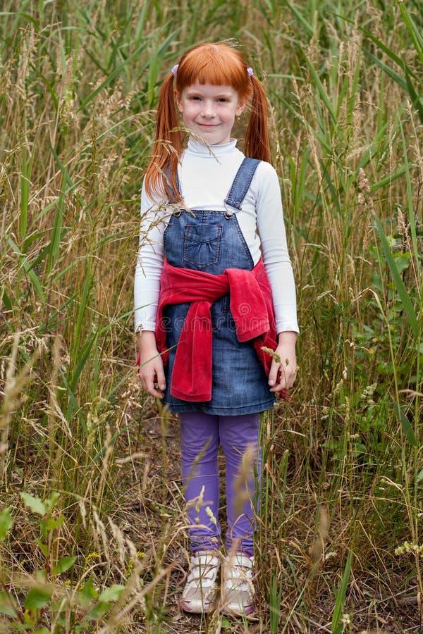 muchacha pelirroja con las pecas que se colocan en hierba alta imagen de archivo