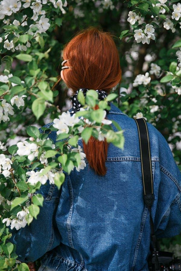 Muchacha pelirroja hermosa que presenta y que sueña en los colores de una manzana en la primavera imagenes de archivo