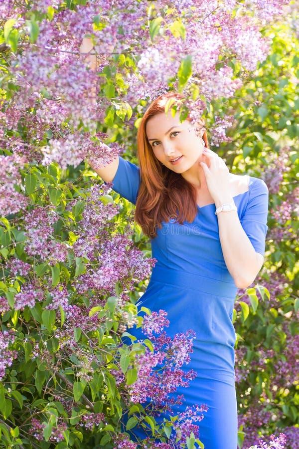 Muchacha pelirroja joven hermosa en vestido azul entre flowe de la primavera imagenes de archivo